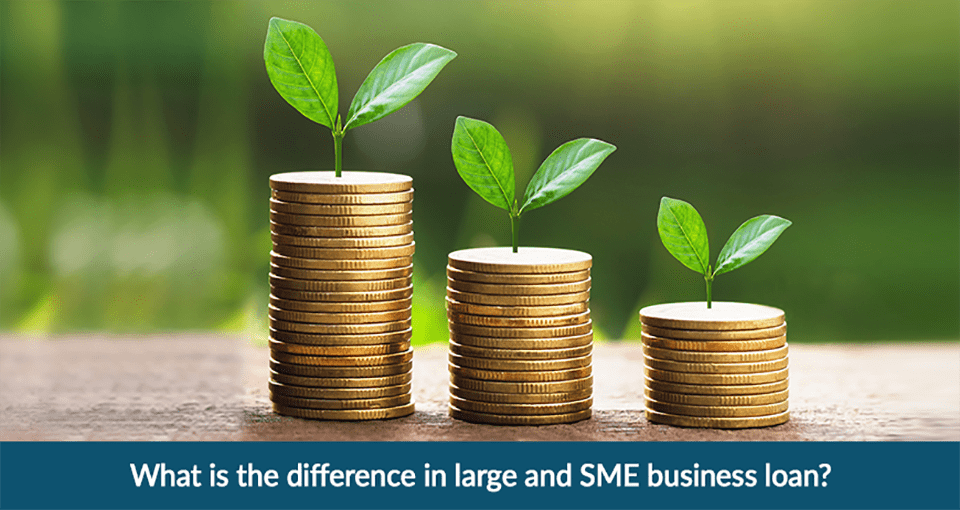 Large and SME Business Loan